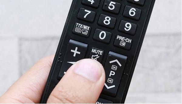 Nhấn nhầm phải nút MUTE trên đầu DVD hoặc do sự cố kết nối